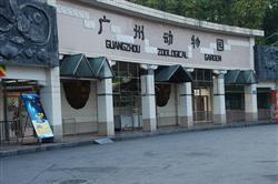 Đi tham quan sở thú lớn nhất tại Quảng Châu
