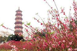 Chốn thờ tự linh thiêng nhất tại Quảng Châu - Núi Liên Hoa