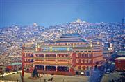 Du lịch vùng đất Phật giáo Tây Tạng