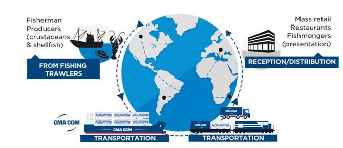 AQUAVIVA - một thế hệ container mới để chuyên chở tôm hùm sống