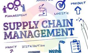 Cơ hội nghề nghiệp của Supply Chain – Chuỗi cung ứng