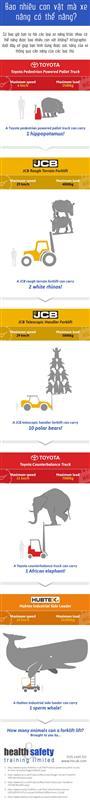 [ Infographics ] Xe nâng (Forklift) có thể nâng được bao nhiêu con vật?