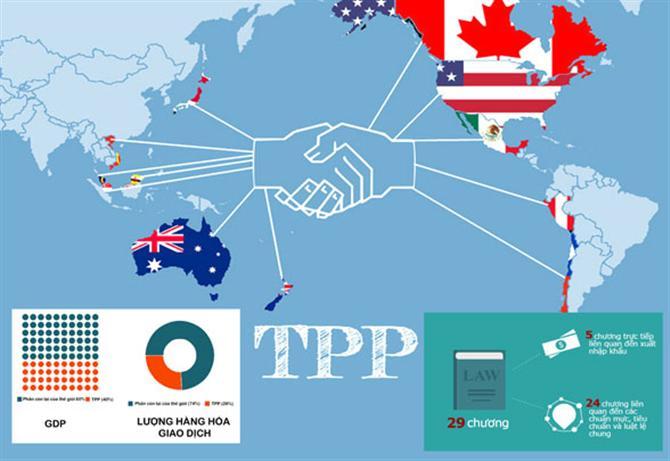 Việt Nam chiếm tỷ trọng xuất khẩu thế nào trong các nước TPP