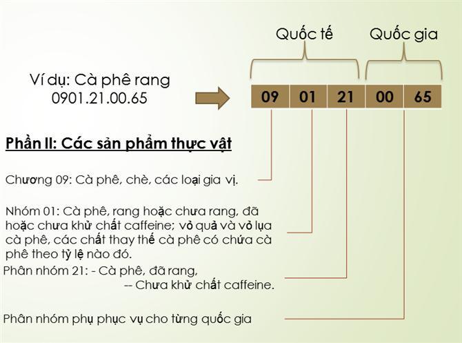 HS Code là gì? Tầm quan trọng của HS Code?