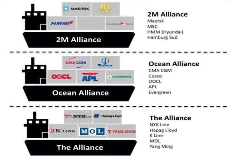 Liên minh hãng tàu và thị trường vận tải biển toàn cầu - Blog của Mr.  Logistics Việt Nam